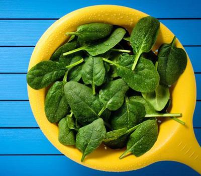 گیاهان آهن دار ,منابع آهن خوراکی