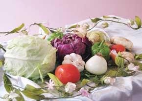 طراوت در سالمندی با تغذیه سالم