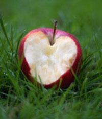 11 دلیل برای خوردن روزی 1 عدد سیب