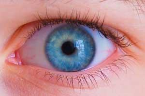 درمان گل مژه, گل مژه چشم, بیماری های چشمی