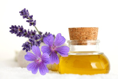 درمان آلرژی,داروهای گیاهی برای آلرژی