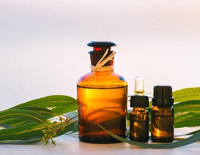 گیاهان داروئی موثر برای رفع خر و پف