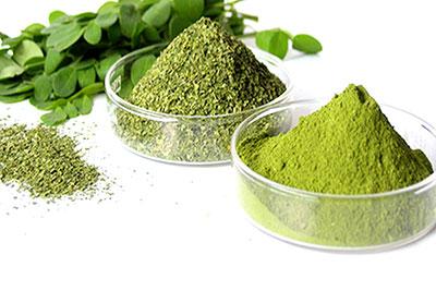 گیاهان دارویی برای درمان ریزش مو