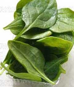 گیاهی برای کم خونی و موثر در لاغری