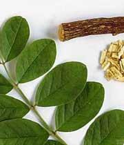 گیاهان دارویی مفید برای دستگاه گوارش