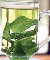 داروهای گیاهی,گیاهان دارویی