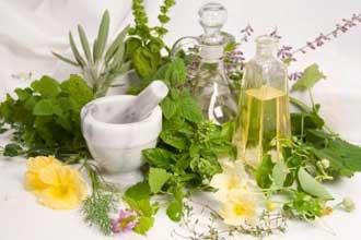 داروهای گیاهی کاهنده های کلسترول