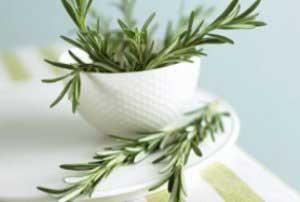 بوییدن این گیاه، حافظه را تقویت می کند