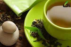 چای سبز برای این افراد ممنوع است!خواص چای سبز. اثر چای سبز بر قندخون. چای سبز و چربی خون