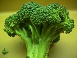 آسپرین,گیاهان حاوی آسپرین طبیعی,آسپرین طبیعی,قرص آسپرین