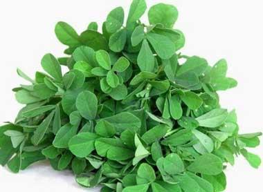 سرفه,درمان سرفه,درمان سرفه با داروهای گیاهی