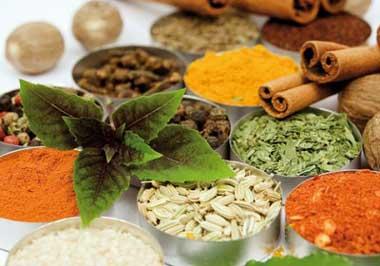 دلایل بروز نفخ معده,درمان نفخ معده با دارو های گیاهی