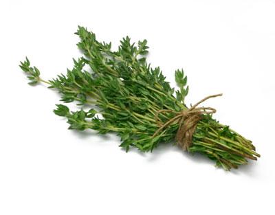 خواص درمانی آویشن,خاصیت گیاه آویشن
