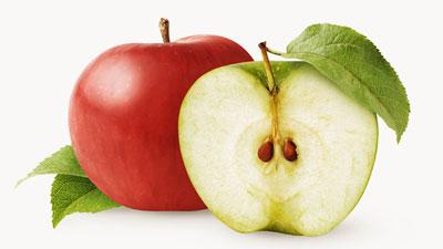 مضرات هسته ی سیب<p style=