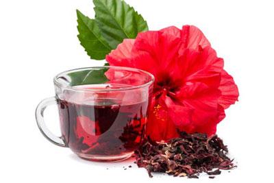 عوارض چای ترش,فواید چای ترش,خواص گیاه چای ترش