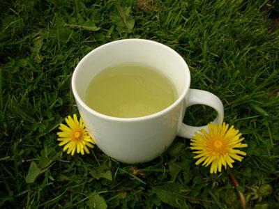 چای قاصدک،خاصیت قاصدک،خاصیت گیاه قاصدک