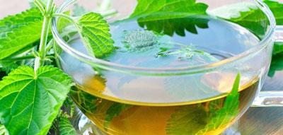 ,گیاهان دارویی برای درمان کم خونی