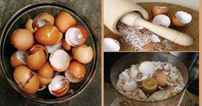 طرز استفاده از پوست تخم مرغ