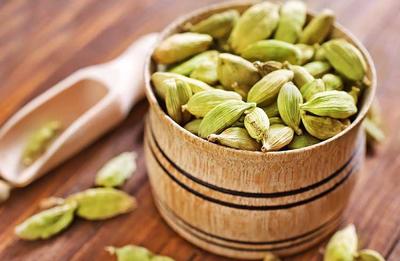 هل دانه ای معجزه گر در گیاهان دارویی