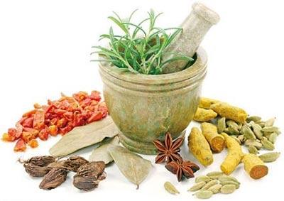 5 گیاه دارویی برای آرام کردن سیستم عصبی