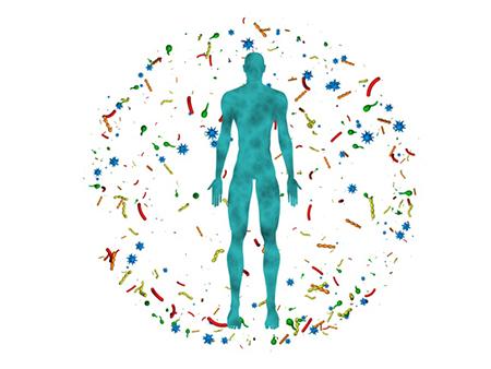 راههای تقویت سیستم ایمنی بدن, راه های تقویت سیستم ایمنی بدن