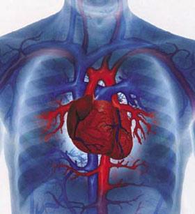 سیگار کشیدن,عوارض سیگار کشیدن ,بیماری های قلبی