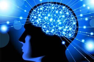 مغز,عوامل موثر در کاهش قدرت مغز,تقويت مغز