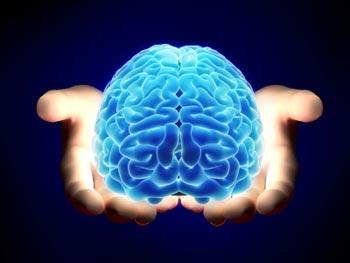 مغز, تقويت مغز, عوامل موثر در کاهش قدرت مغز