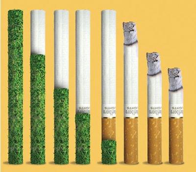 ترک سیگار,تغییرات بدن پس از ترک سیگار,فواید ترک سیگار