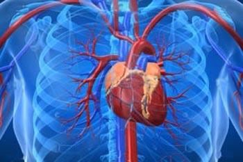 بیماری قلبی,علل ایجاد مشکلات قلبی,خطر ابتلا به بیماریهای قلبی