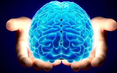 سلامت مغز, راهکارهایی برای حفظ سلامت مغز, رژیم غذایی سالم برای مغز