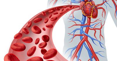 راههای افزایش جریان خون, جریان خون