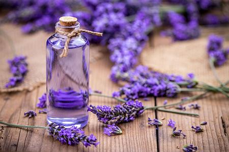 [عکس: lavender-oil01-5.jpg]