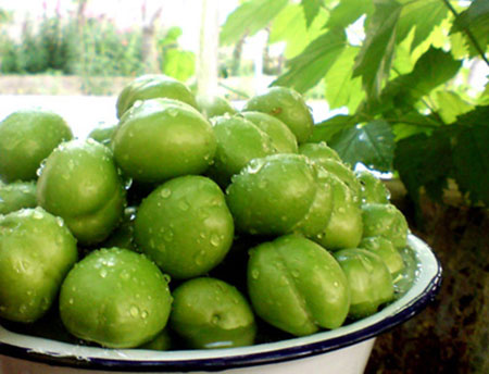 فواید چغاله بادام ,میزان مصرف گوجه سبز