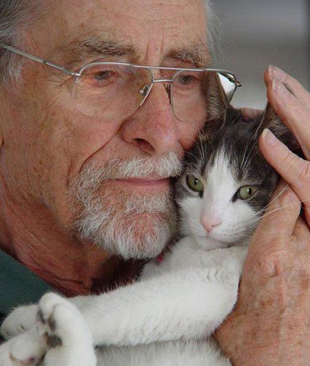 بیماری گربه,عوارض بیماری گربه,انگل گربه