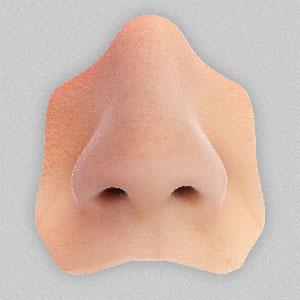 رینوپلاستی,عمل رینوپلاستی,جراحی زیبایی بینی