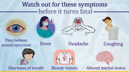 علائم بیماری موکورمایکوزیس, راههای پیشگیری از بیماری قارچ سیاه, راههای درمان بیماری قارچ سیاه