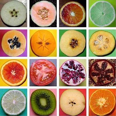 خشکبار,ميوه خشک,خشک کردن میوه