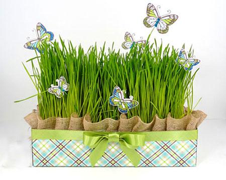 مدل سبزه عید متفاوت