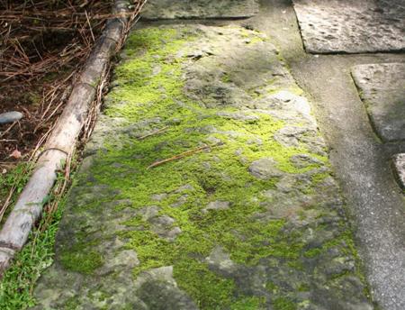 برطرف کردن سبزی رسوبات کاشی, مواد مناسب برای از بین بردن رسوبات سبز