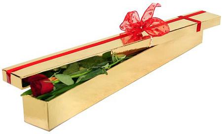 باکس های مدرن گل,مدرن ترین باکس های گل