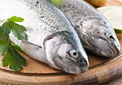 خرید ماهی تازه,راهنمای خرید ماهی تازه