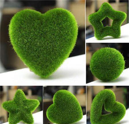 کاشت سبزه به شکل قلب,کاشت سبزه ی عید به شکل قلب