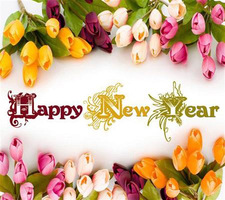 کارت تبریک سال نو میلادی, تصاویر آغاز سال نو میلادی