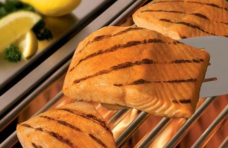 طرز تهیه انواع ماهی,راهنمای خرید ماهی