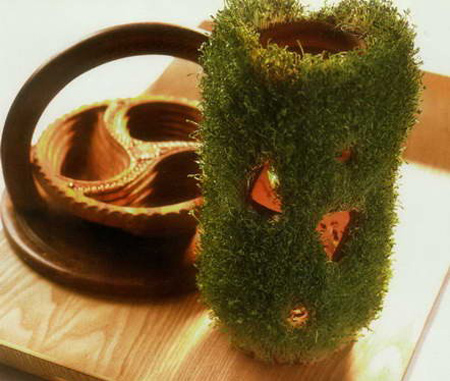 کاشت سبزه عید نوروز, مدل کاشت سبزه عید