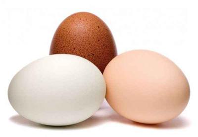 نکات مهم وضروری در نگهداری تخم مرغ