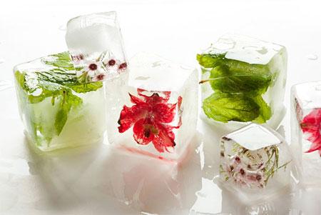 تزیین یخ با گل و میوه های تابستانی,تزیین یخ با گل های تابستانی