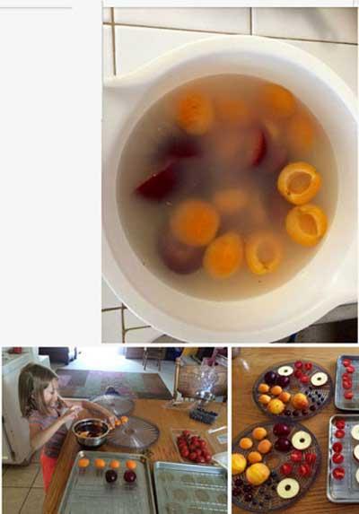 خشک کردن میوه ها,نحوه خشک کردن میوه ها