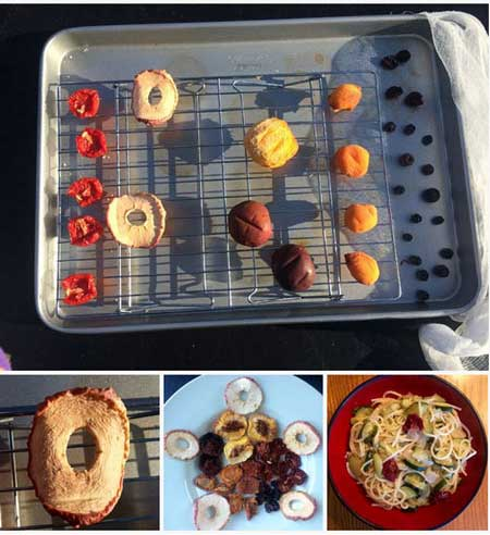 آموزش خشک کردن میوه ها در آفتاب,آموزش مرحله ای خشک کردن میوه ها